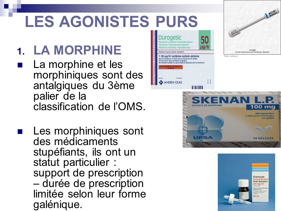 LES AGONISTES PURS LA MORPHINE