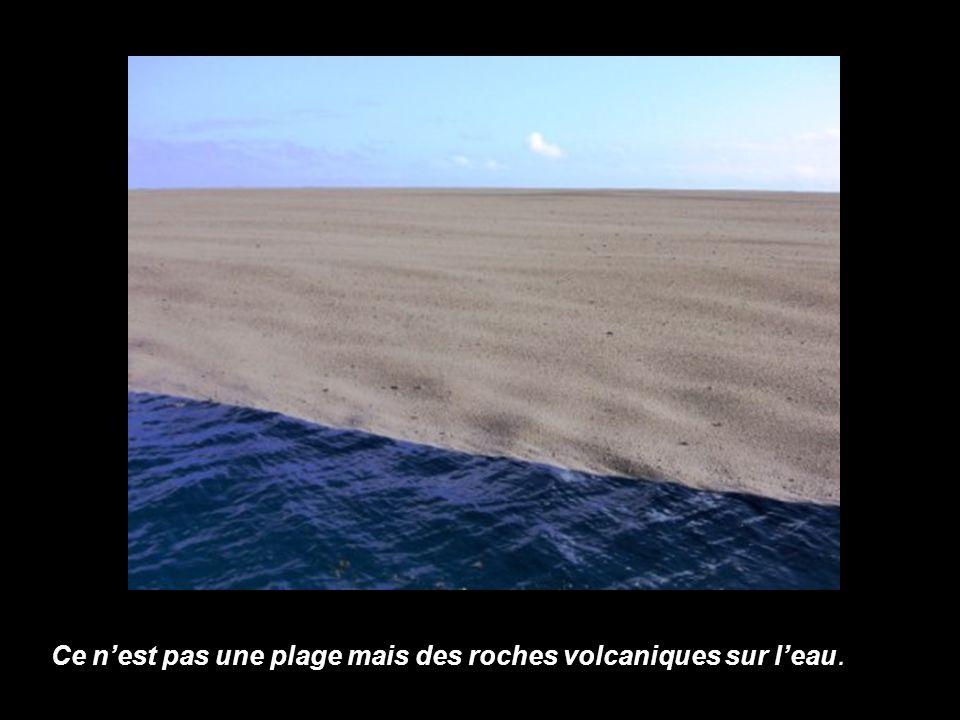 Ce n'est pas une plage mais des roches volcaniques sur l'eau.