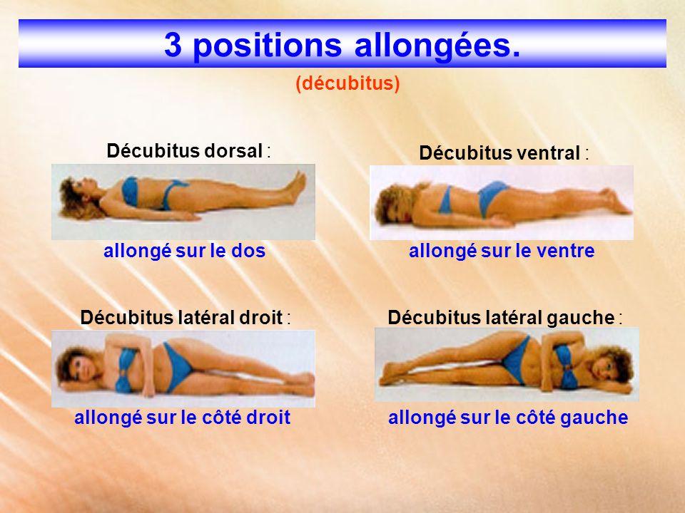 3 positions allongées. (décubitus) Décubitus dorsal :