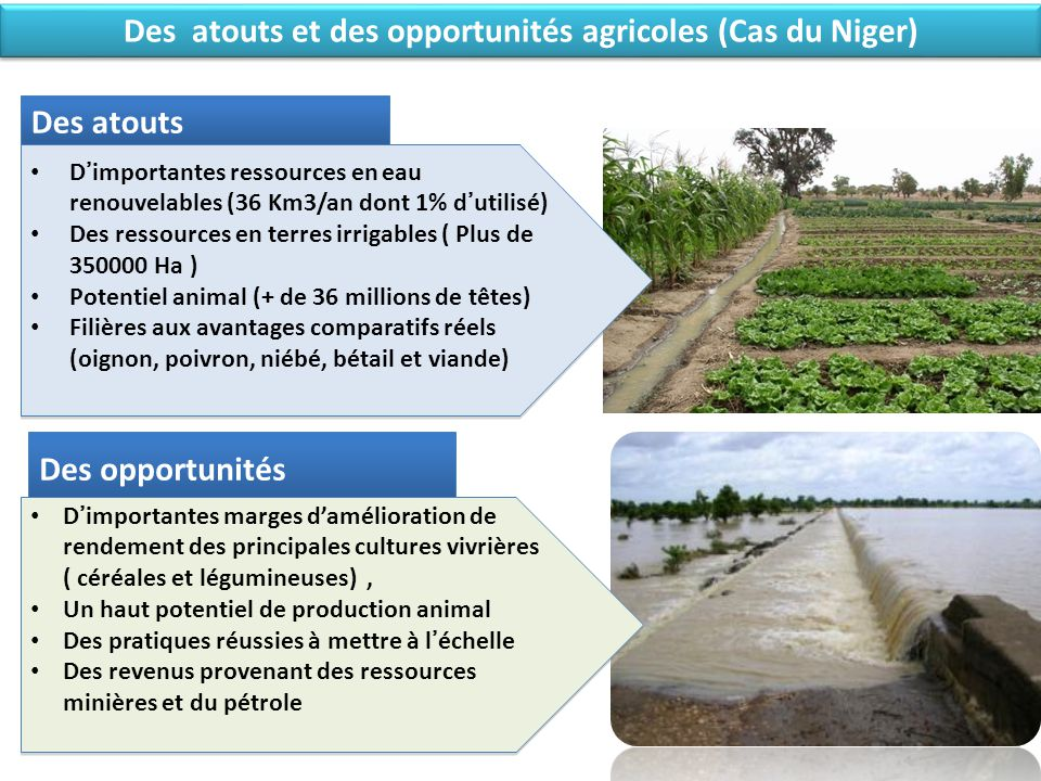 Des atouts et des opportunités agricoles (Cas du Niger)