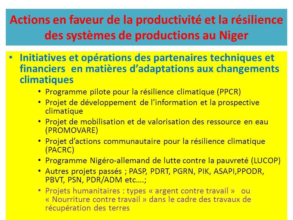 Actions en faveur de la productivité et la résilience des systèmes de productions au Niger