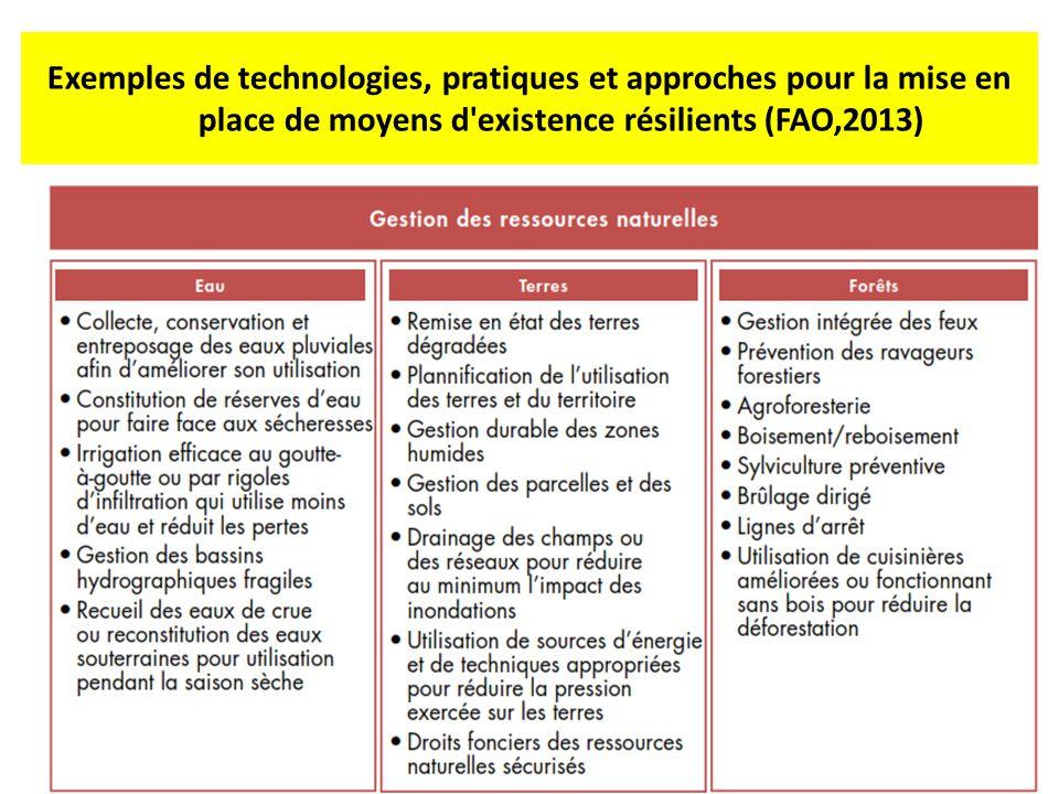 Exemples de technologies, pratiques et approches pour la mise en place de moyens d existence résilients (FAO,2013)