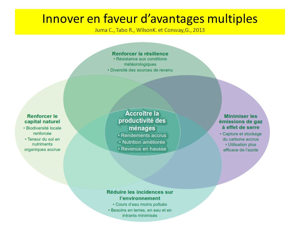 Innover en faveur d'avantages multiples Juma C. , Tabo R. , WilsonK