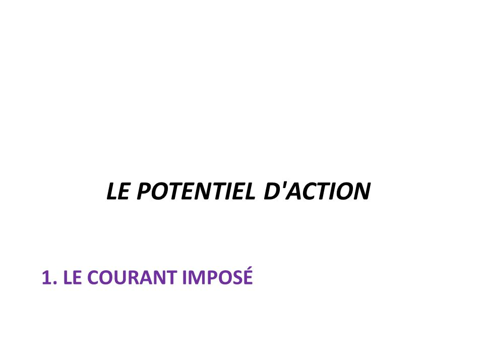 LE POTENTIEL D ACTION 1. Le courant imposé