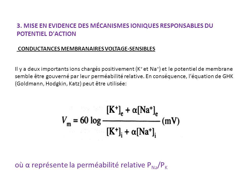 où α représente la perméabilité relative PNa/PK