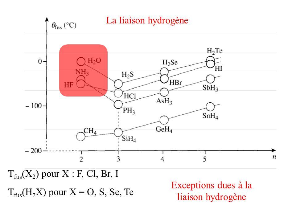 La liaison hydrogène Tfus(X2) pour X : F, Cl, Br, I.