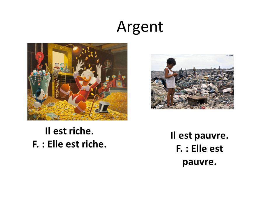 Argent Il est riche. F. : Elle est riche.