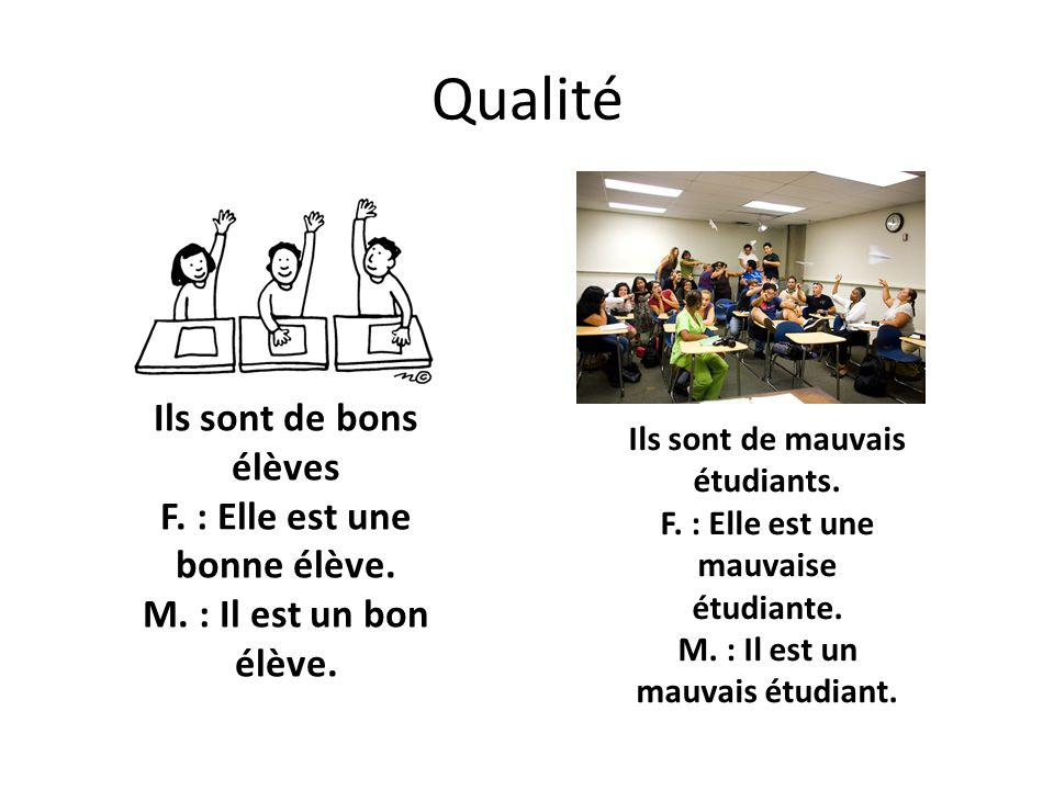 Qualité Ils sont de bons élèves F. : Elle est une bonne élève. M. : Il est un bon élève.