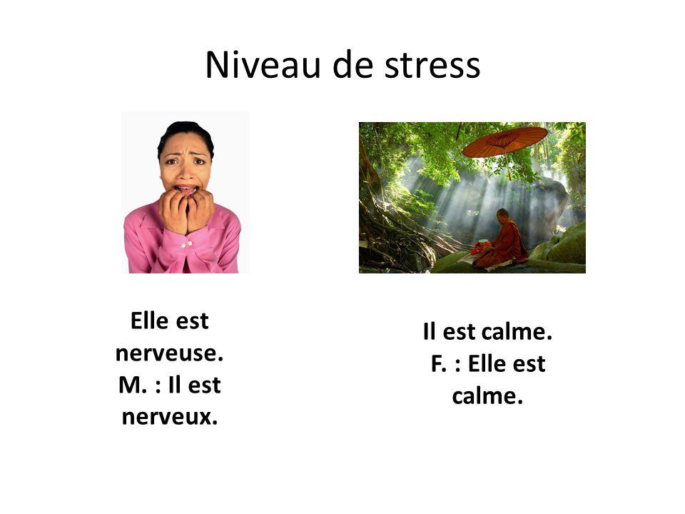 Niveau de stress Elle est nerveuse. M. : Il est nerveux.