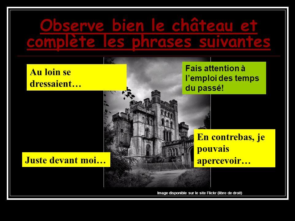 Observe bien le château et complète les phrases suivantes