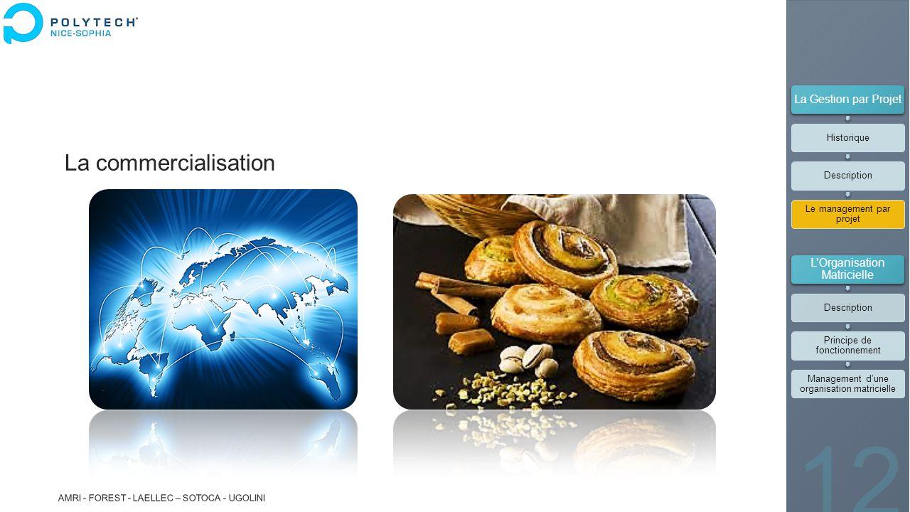La commercialisation La Gestion par Projet L'Organisation Matricielle