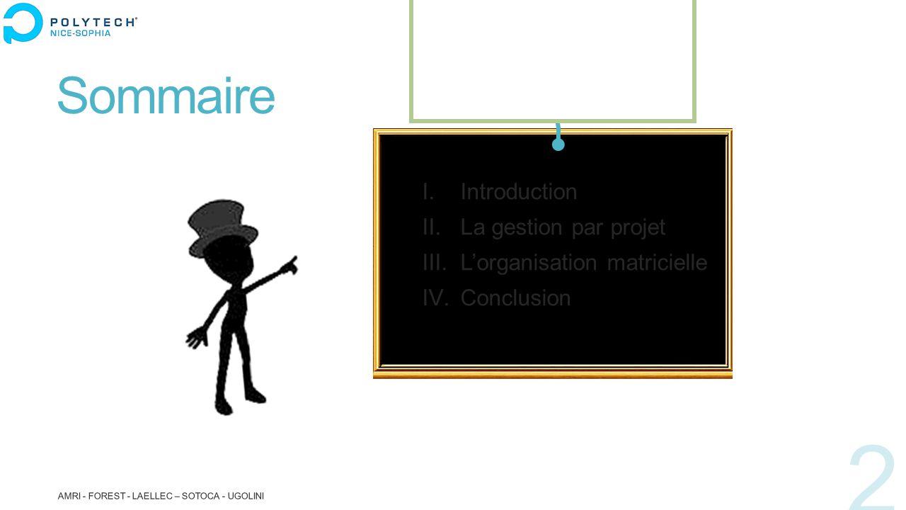 Sommaire Introduction La gestion par projet L'organisation matricielle