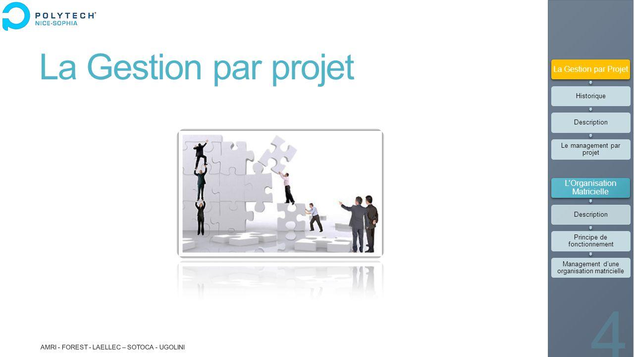La Gestion par projet La Gestion par Projet L'Organisation Matricielle