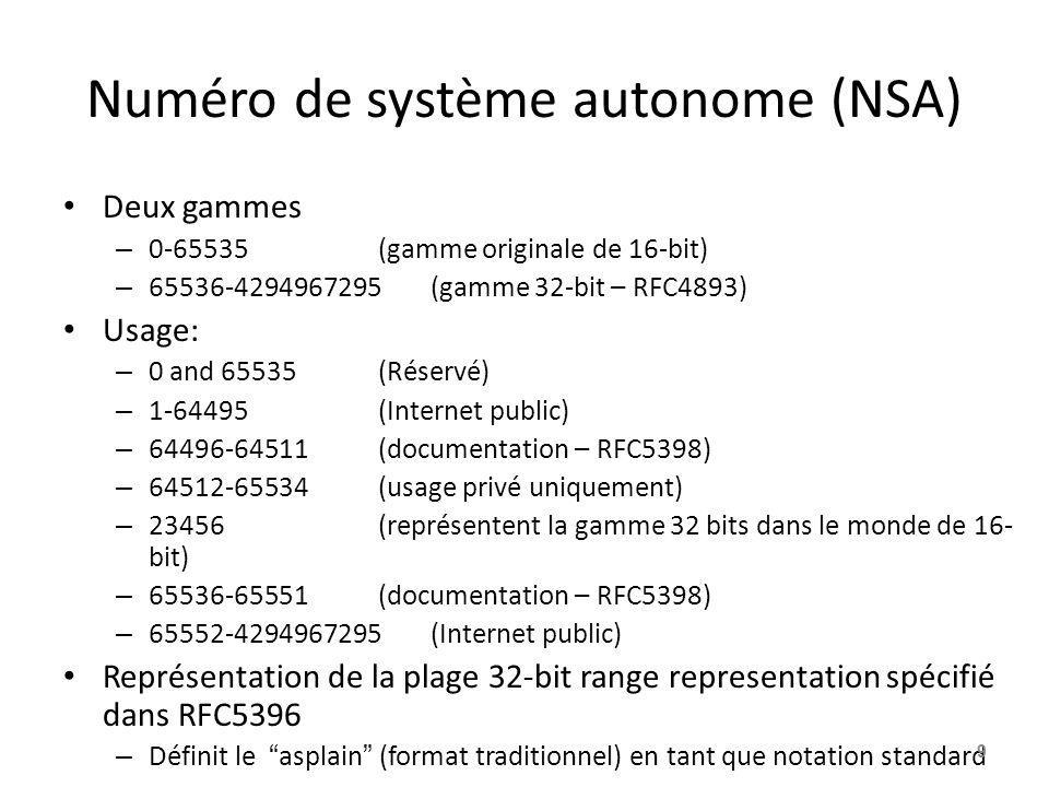 Numéro de système autonome (NSA)