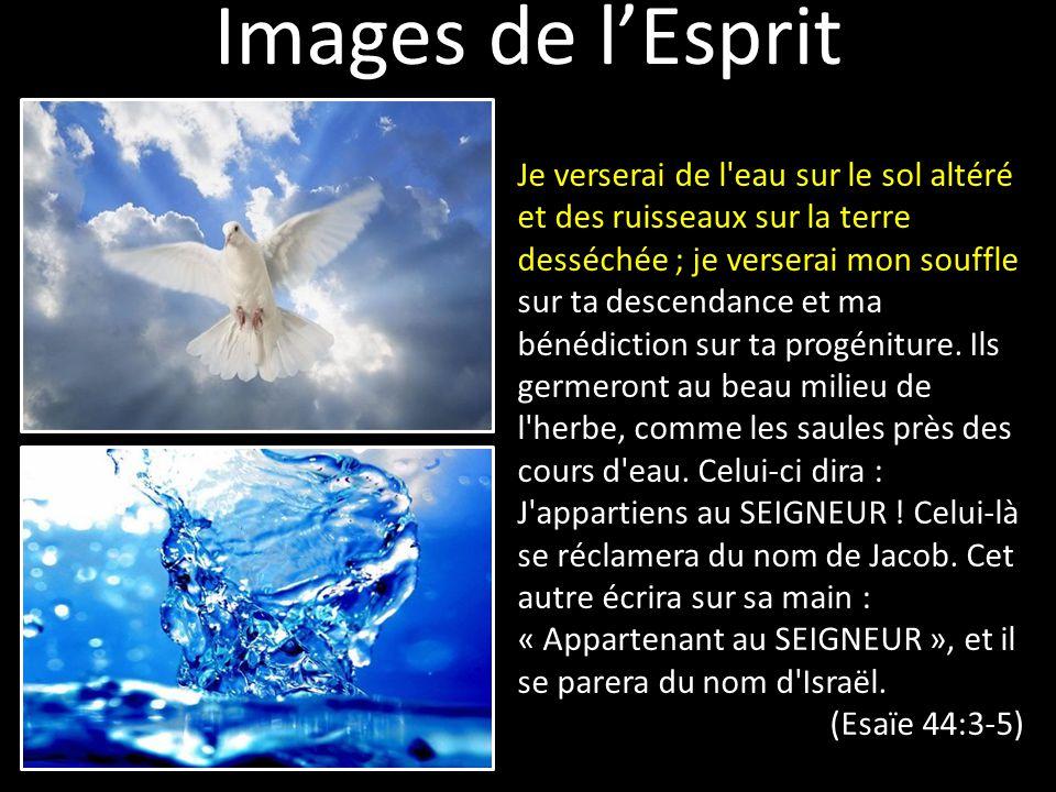 Images de l'Esprit