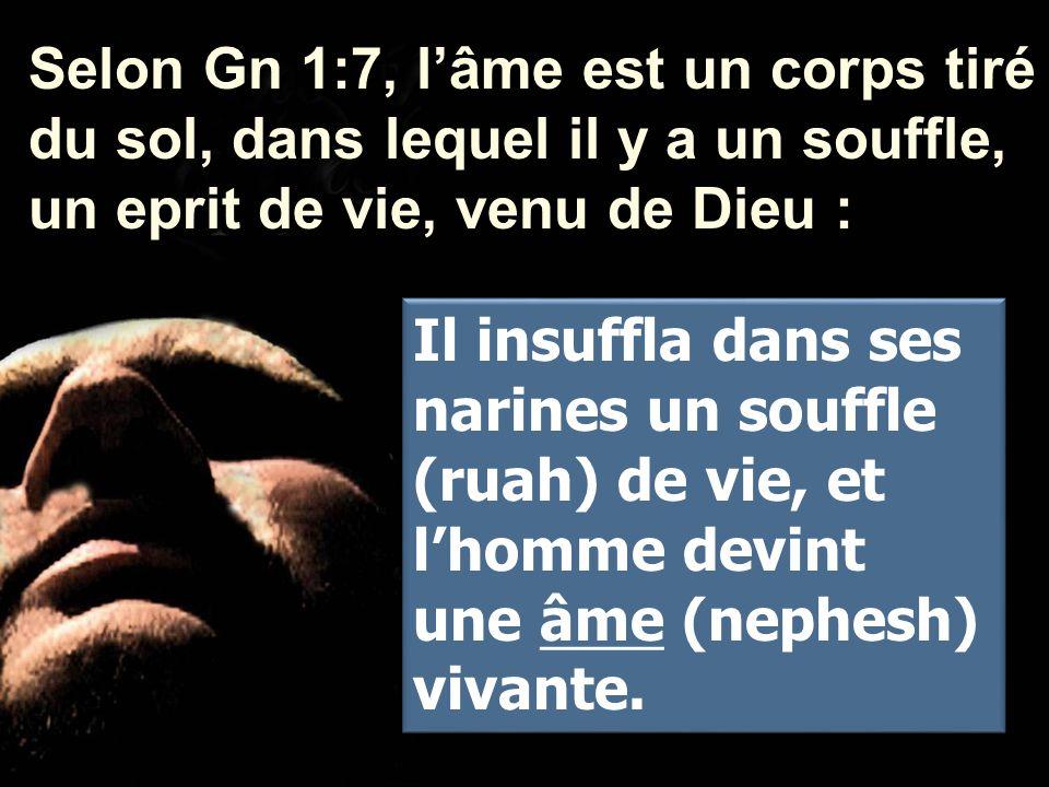 Selon Gn 1:7, l'âme est un corps tiré du sol, dans lequel il y a un souffle, un eprit de vie, venu de Dieu :
