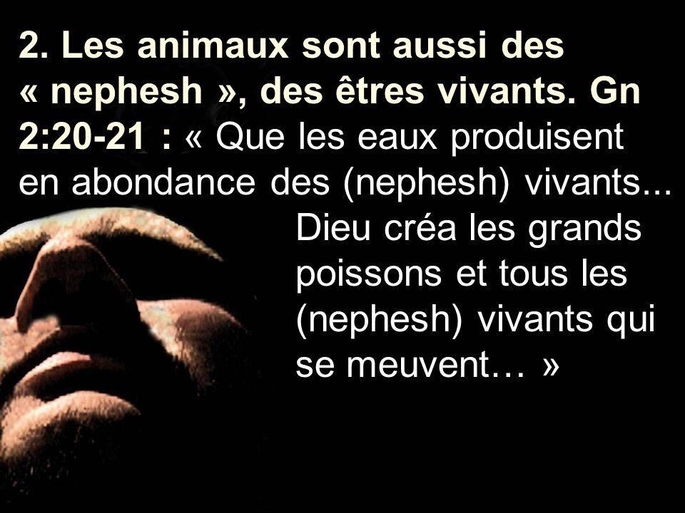 2. Les animaux sont aussi des « nephesh », des êtres vivants