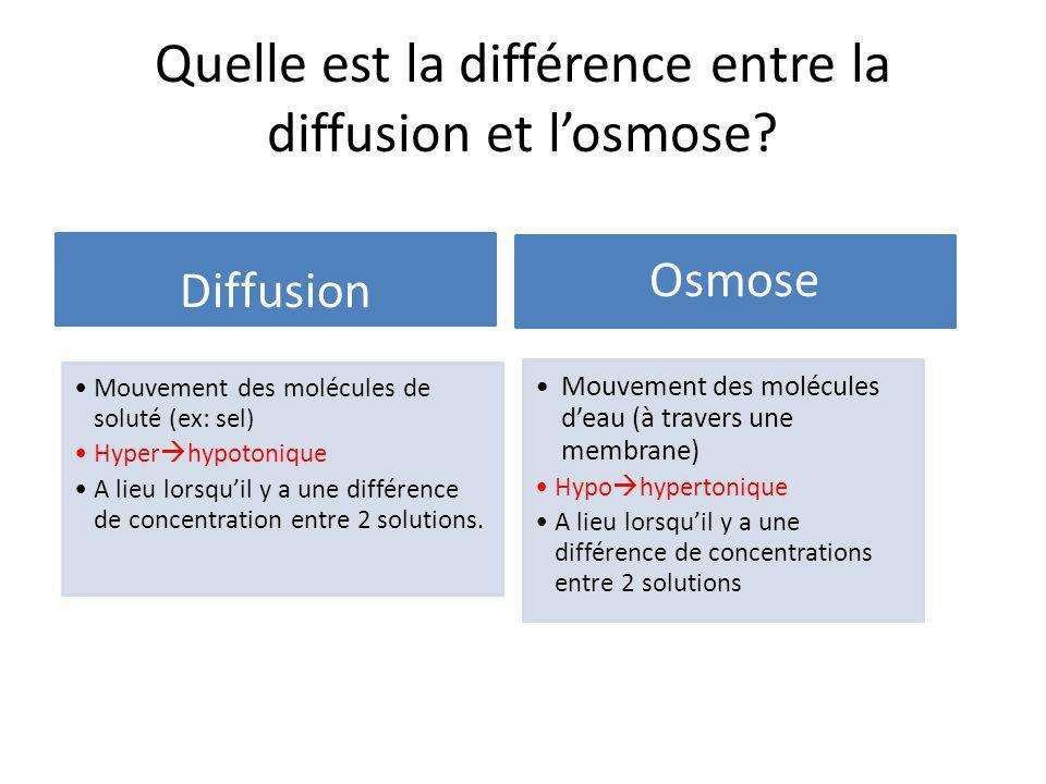 Quelle est la différence entre la diffusion et l'osmose