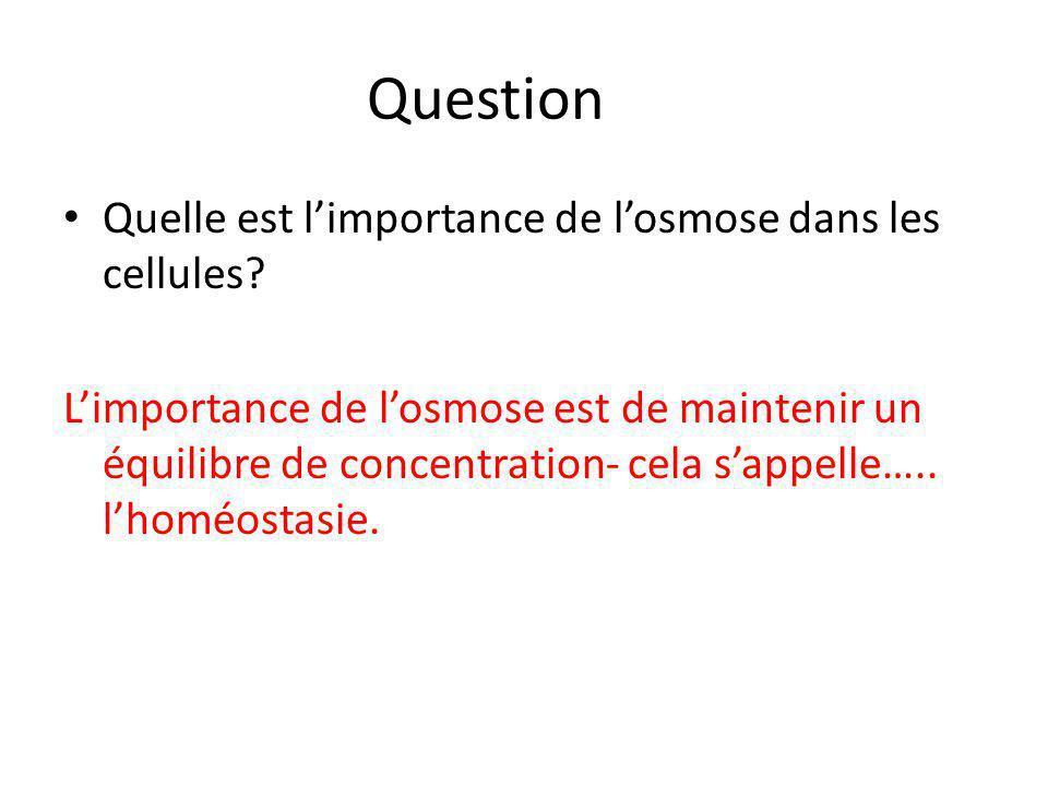 Question Quelle est l'importance de l'osmose dans les cellules