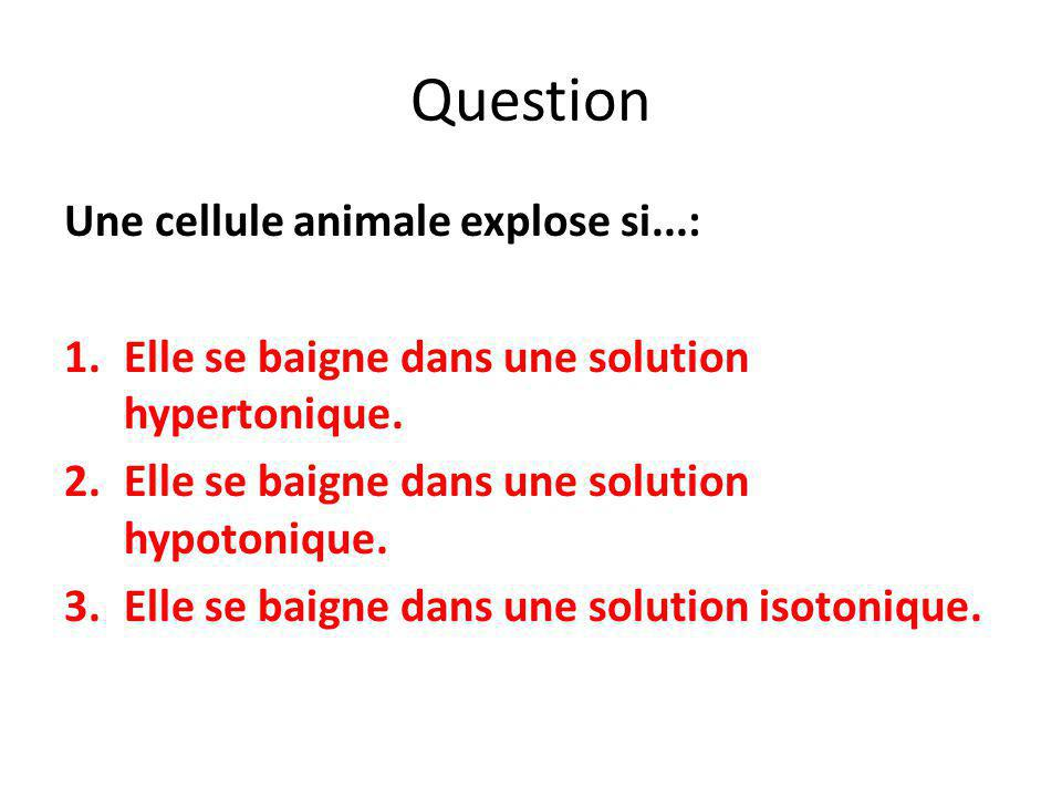 Question Une cellule animale explose si...: