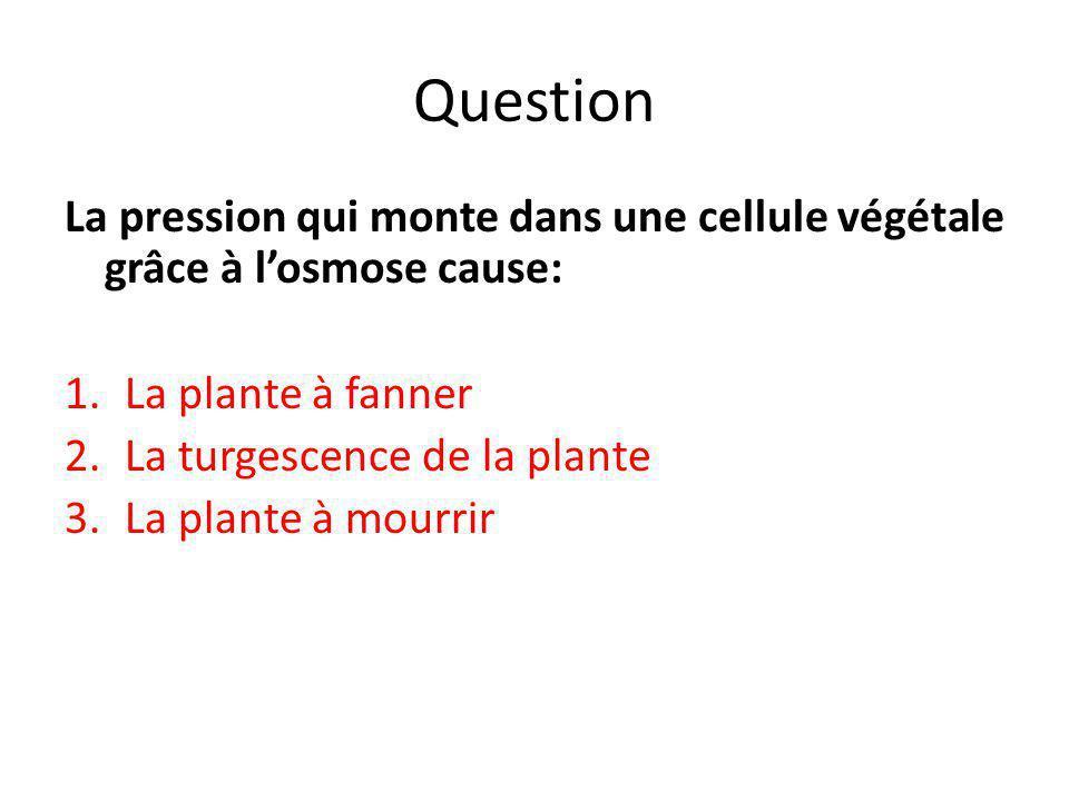 Question La pression qui monte dans une cellule végétale grâce à l'osmose cause: La plante à fanner.