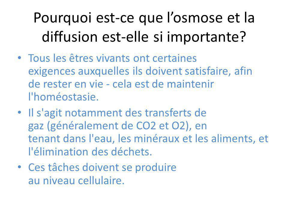 Pourquoi est-ce que l'osmose et la diffusion est-elle si importante