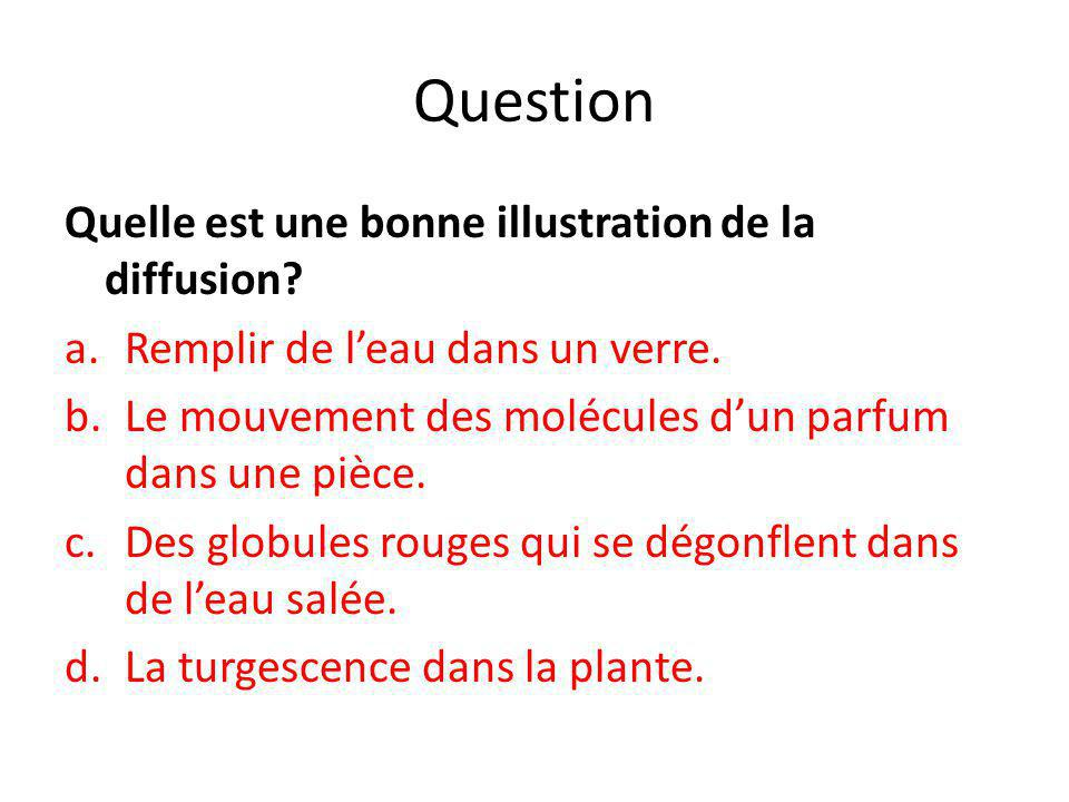 Question Quelle est une bonne illustration de la diffusion