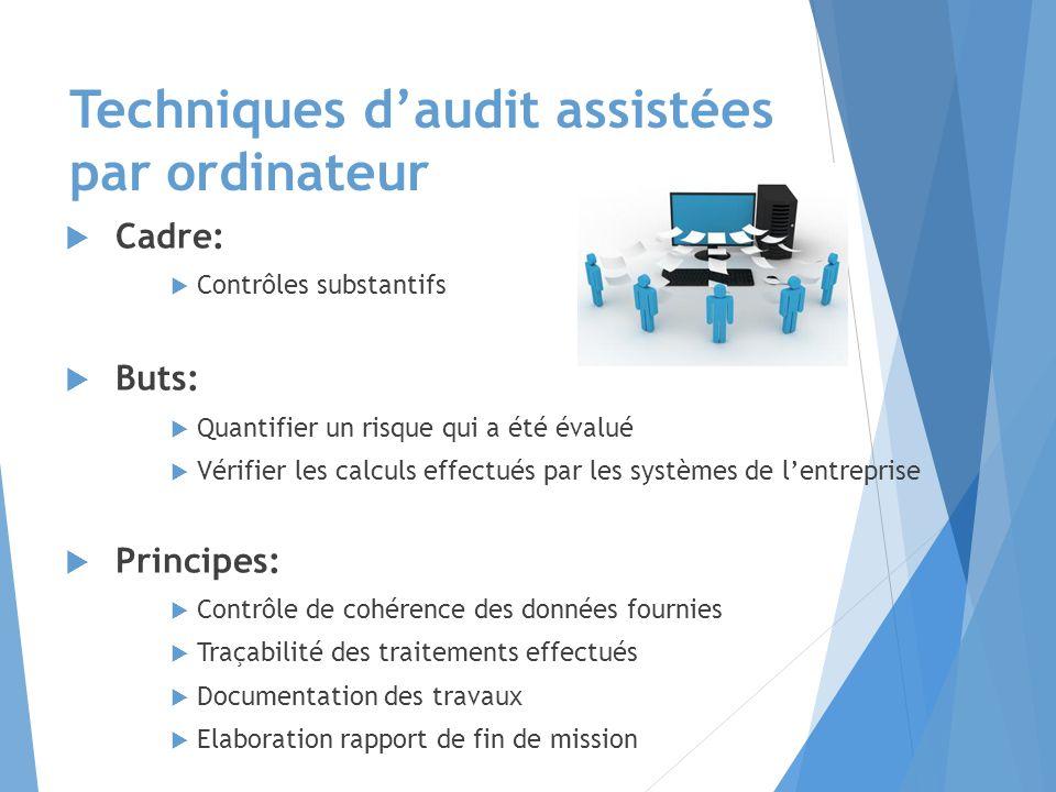 Techniques d'audit assistées par ordinateur