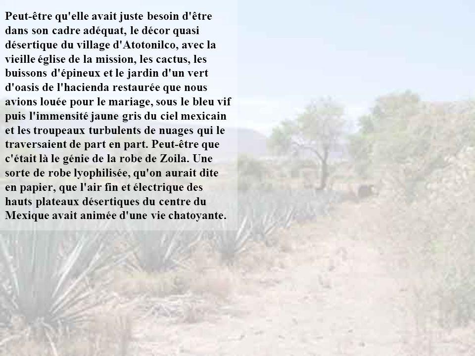 Peut-être qu elle avait juste besoin d être dans son cadre adéquat, le décor quasi désertique du village d Atotonilco, avec la vieille église de la mission, les cactus, les buissons d épineux et le jardin d un vert d oasis de l hacienda restaurée que nous avions louée pour le mariage, sous le bleu vif puis l immensité jaune gris du ciel mexicain et les troupeaux turbulents de nuages qui le traversaient de part en part.