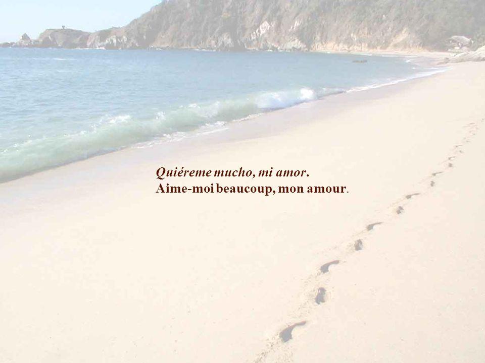Quiéreme mucho, mi amor. Aime-moi beaucoup, mon amour.