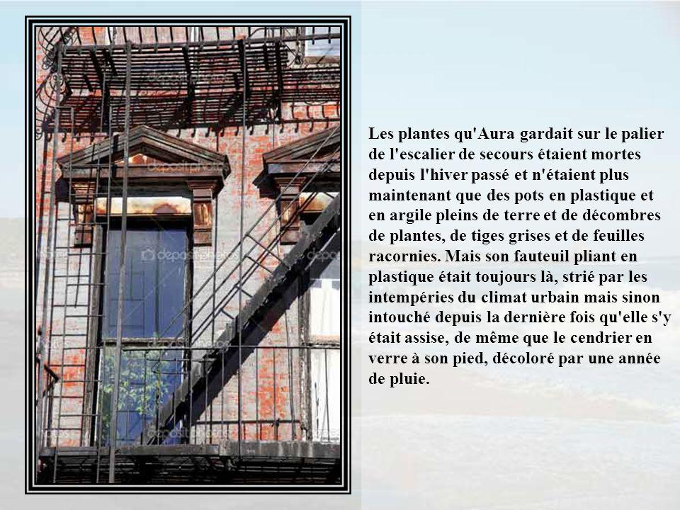 Les plantes qu Aura gardait sur le palier de l escalier de secours étaient mortes depuis l hiver passé et n étaient plus maintenant que des pots en plastique et en argile pleins de terre et de décombres de plantes, de tiges grises et de feuilles racornies.