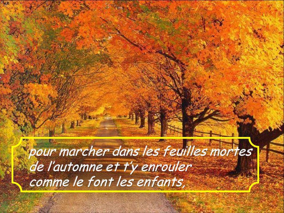 pour marcher dans les feuilles mortes de l'automne et t'y enrouler