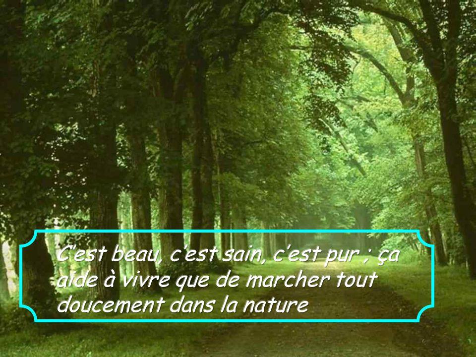 C'est beau, c'est sain, c'est pur ; ça aide à vivre que de marcher tout doucement dans la nature