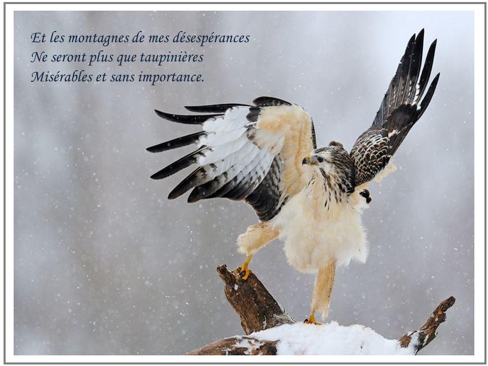 Et les montagnes de mes désespérances Ne seront plus que taupinières Misérables et sans importance.