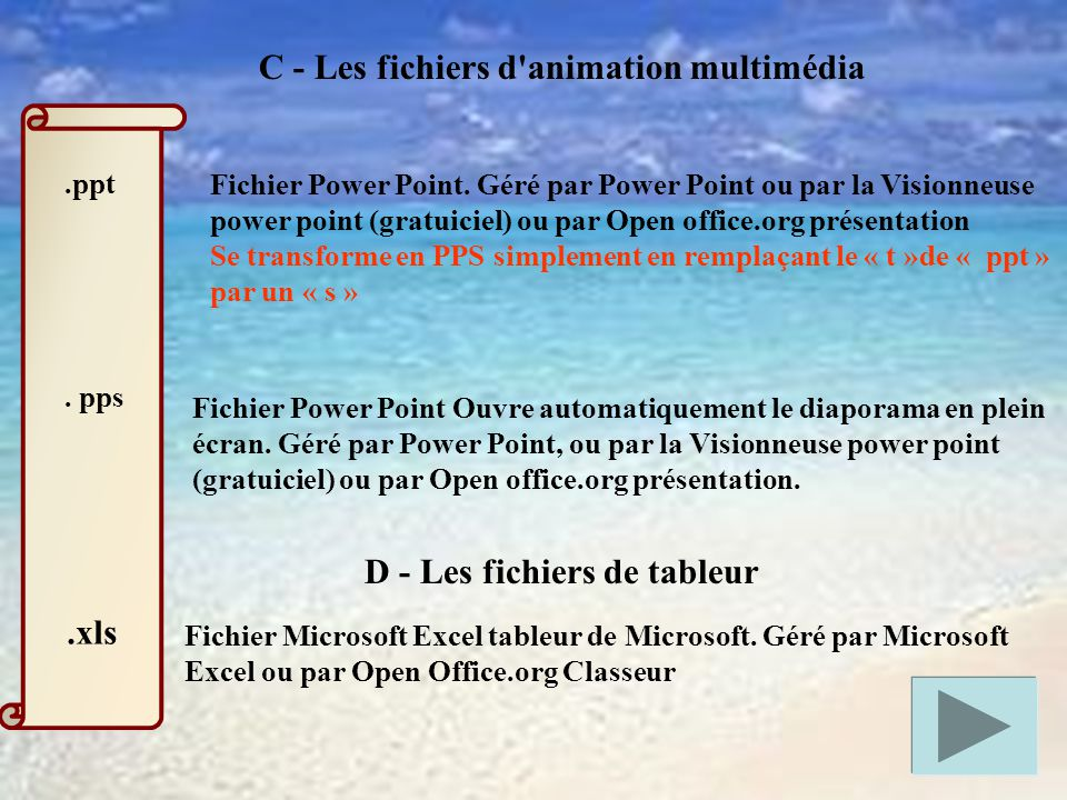 C - Les fichiers d animation multimédia