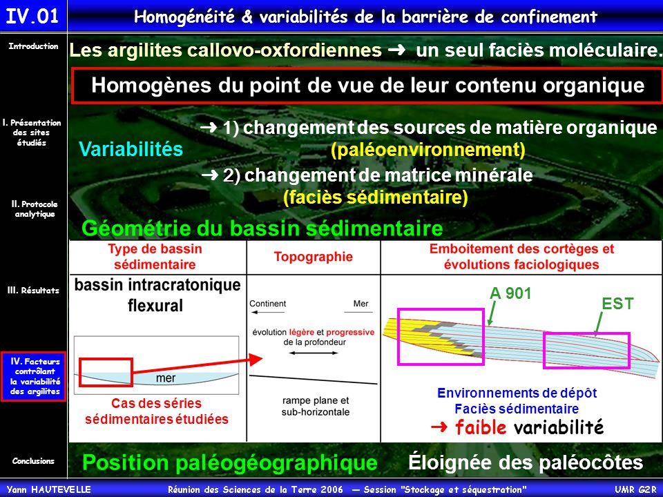 Géométrie du bassin sédimentaire Position paléogéographique