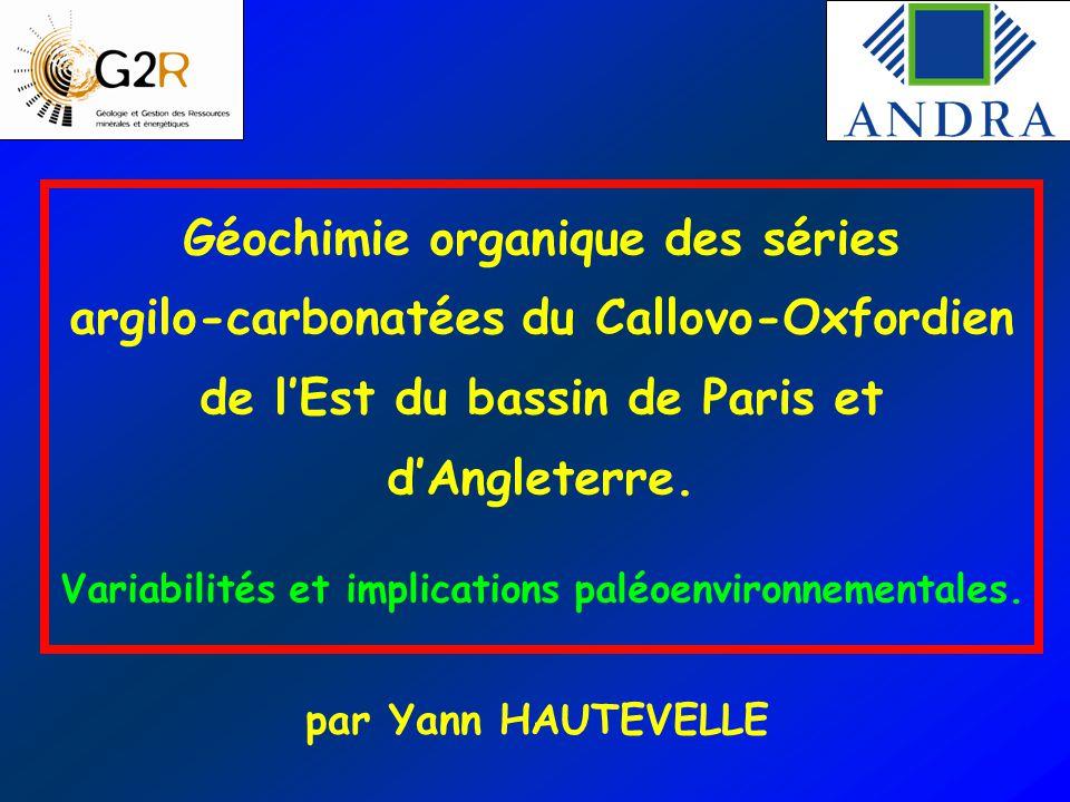 Géochimie organique des séries argilo-carbonatées du Callovo-Oxfordien