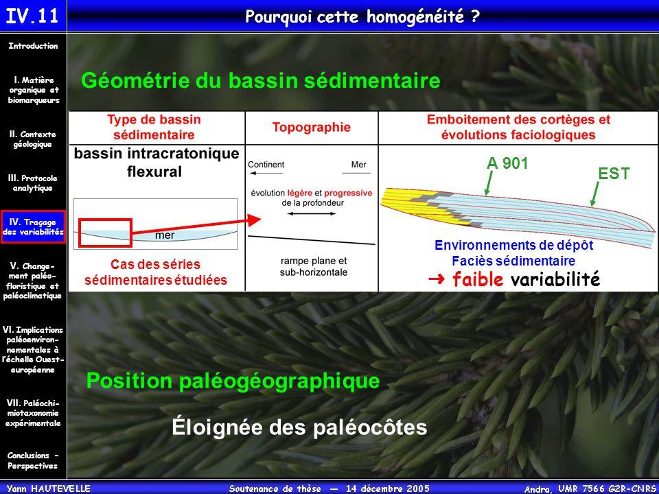 Pourquoi cette homogénéité Géométrie du bassin sédimentaire