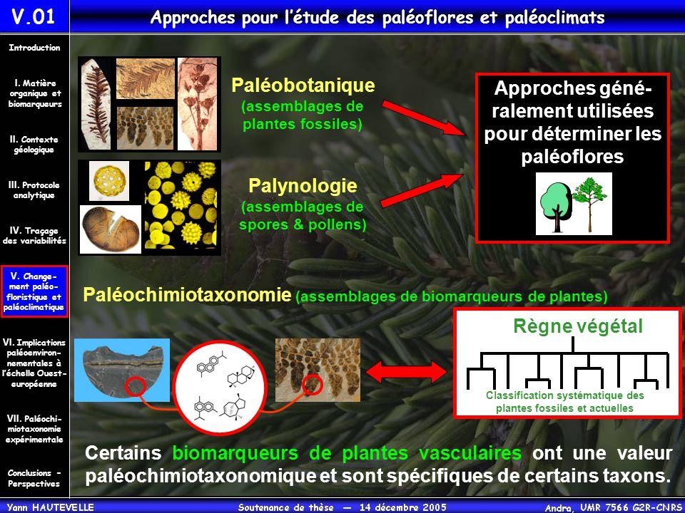 Approches pour l'étude des paléoflores et paléoclimats