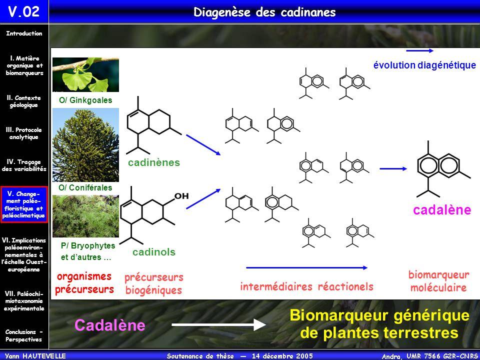 Biomarqueur générique de plantes terrestres Cadalène