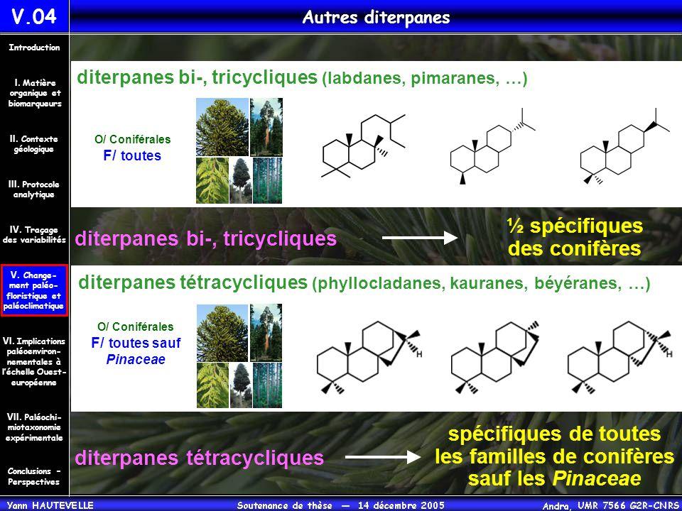 diterpanes bi-, tricycliques
