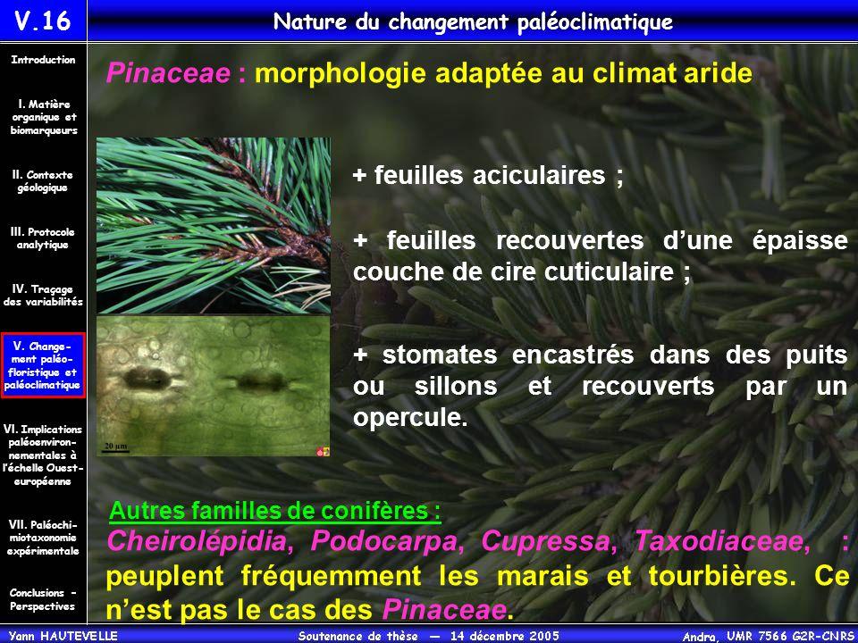 Nature du changement paléoclimatique