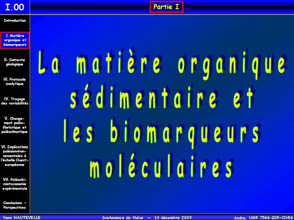 La matière organique sédimentaire et les biomarqueurs moléculaires