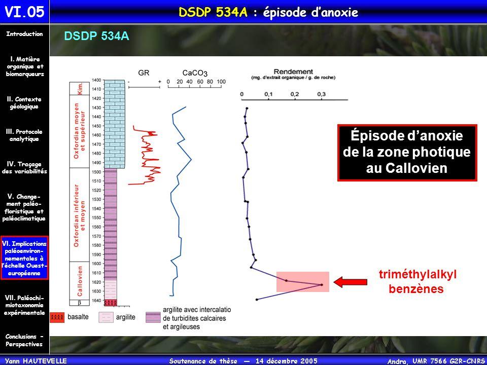 DSDP 534A : épisode d'anoxie