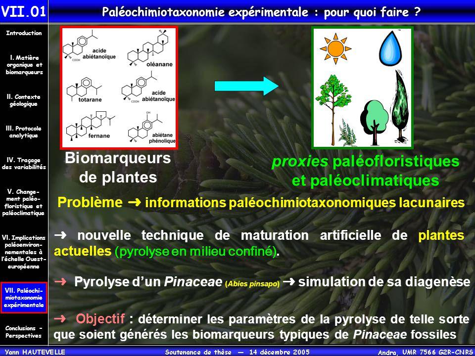 Paléochimiotaxonomie expérimentale : pour quoi faire