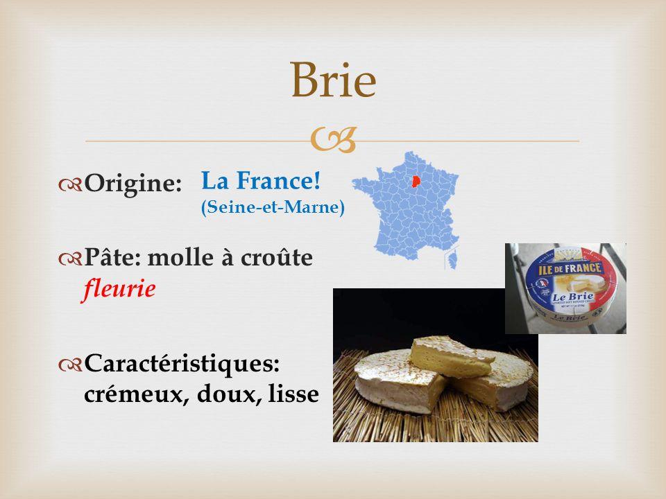 Brie La France! Origine: Pâte: molle à croûte fleurie