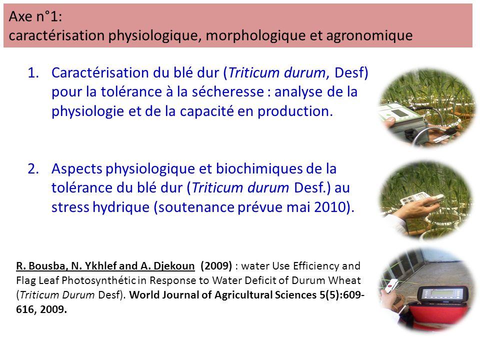 caractérisation physiologique, morphologique et agronomique