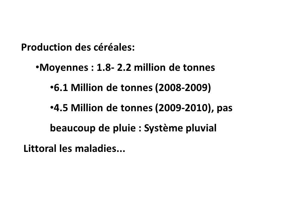 Production des céréales: Moyennes : 1.8- 2.2 million de tonnes. 6.1 Million de tonnes (2008-2009)