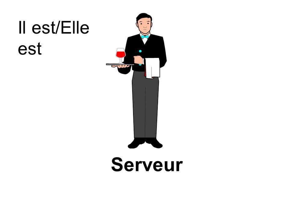 Il est/Elle est Serveur