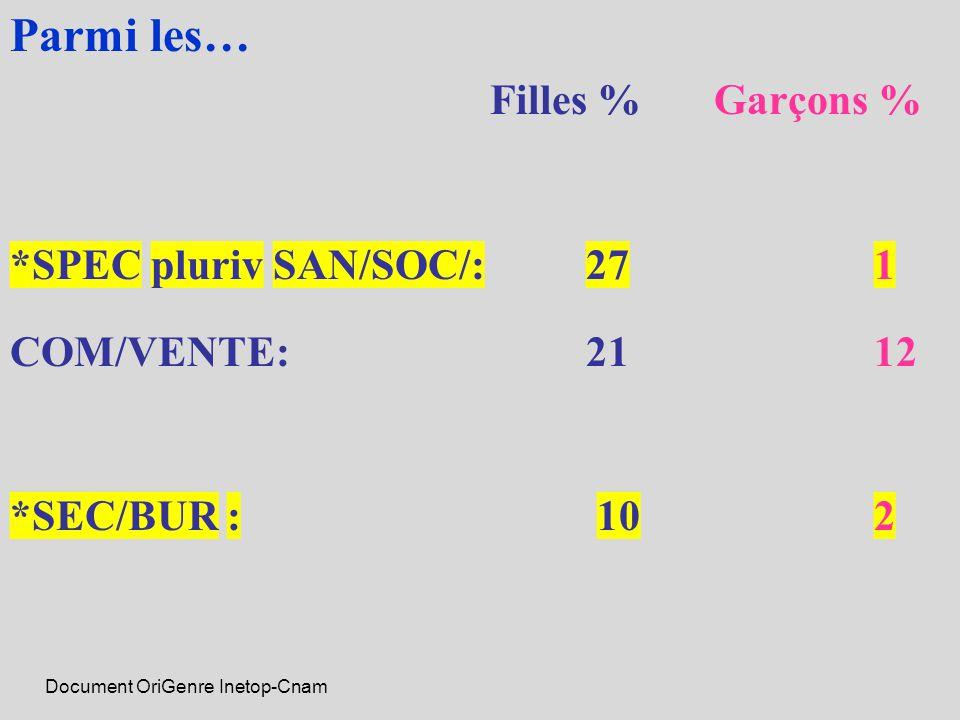 Document OriGenre Inetop-Cnam